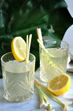 Glasses of Lemongrass Drinks with Lemon. Two glasses of lemongrass drinks with lemon with green leaf background royalty free stock photo