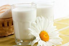 Two glasses of milk Stock Images