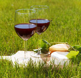 Two glasses of the natural homemade red wine Stock Images