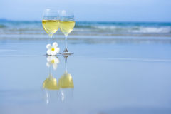 Free Two Glasses Of White Wine Royalty Free Stock Photo - 5816205