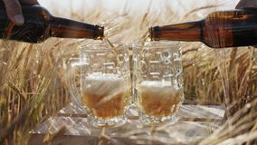 In two glasses pour cold beer from bottles. In two glasses pouring cold beer from bottles against the background of ripe barley spikes on the field. Slow motion stock footage