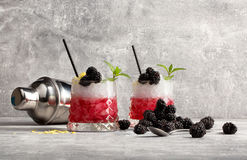 Two glasses with red coctail and ice, blackberries and green leaves of mint, metallic shaker on a grey light background. Two glasses with fruit cocktails, black Royalty Free Stock Image