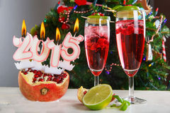 Two glasses with red pomgranate champagne Royalty Free Stock Photos