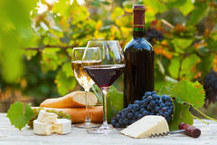 Two glasses of red and white wine. Bottle, cheese and baguette stock photography
