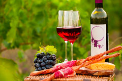 Two glasses of red wine with bottle,  bread, meat, grape and che Royalty Free Stock Images