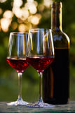 Two glasses of red wine and bottle Stock Images