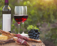 Two glasses of red wine with bread, meat, grape and cheese Stock Photos