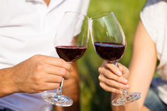 Two glasses of the red wine, picnic theme Stock Photography
