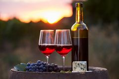 Two glasses of red wine in the vineyard at sunset Royalty Free Stock Image