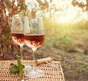 Two glasses of the rose wine in autumn vineyard Stock Photography