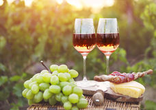 Two glasses of rose wine with bread, meat, grape and cheese Stock Image