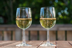 Two glasses with sparkling wine. Refreshments with two glasses sparkling wine on a table stock photos