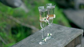 Two glasses with sparkling wine. On the wood. The green grass background stock video footage