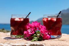 Two glasses of summer red cocktail with ice and a sprig of Bougainvillea flowers between on the blue sky background Stock Photography