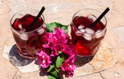 Two glasses of summer red cocktail with ice and a sprig of Bougainvillea flowers between on the natural stone background Stock Photos