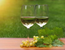 Two glasses of white wine Royalty Free Stock Photos