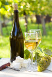 Two glasses of white wine and bottle Royalty Free Stock Images