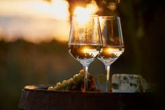 Two glasses of white wine at sunset royalty free stock photography
