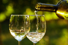 Two glasses of white wine Stock Photo