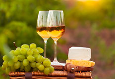 Two glasses white wine, various sorts of cheese and grapes on th. E background of green grape leaves Royalty Free Stock Photos
