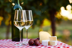 Two glasses of wine and bottle Royalty Free Stock Image