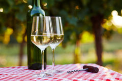 Two glasses of wine and bottle Stock Photography