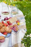 Two glasses of wine and fruit. Eating on green grass and plaid. Spring and vacation. Place for text. Two glasses of wine and fruit. Eating on green grass and Stock Photo