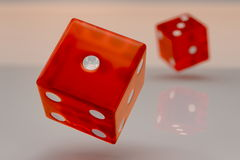 Two glossy red plastic rolling dices Royalty Free Stock Image