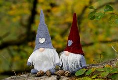Cute gnomes and some pine cones in colourful autumn forest stock images