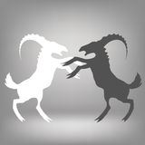 Two goats. Illustration with two goats on a grey background Royalty Free Stock Photo