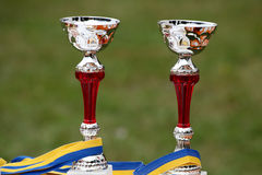 Two goblets. For the champions royalty free stock images