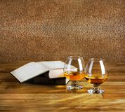 Two goblets of brandy and open book Stock Images