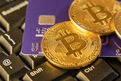 Two gold bitcoins with blue credit card on top of computer keyboard at background, cryptocurrency accepting for payment and. Finance concept royalty free stock photo