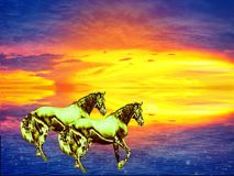 Two gold horses rush through the water to the sunset. vector illustration