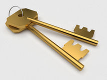 Two gold keys Stock Photography