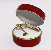 Two gold keys in a satiny box Royalty Free Stock Photography