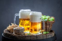 Two gold pints of beer on old barrel. Two gold pints of beer on old wooden barrel stock image