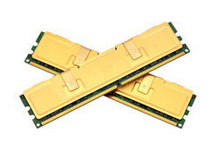 Two gold ram Stock Images