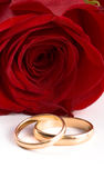 Two gold wedding bands Royalty Free Stock Photo