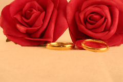 Two gold wedding bands and red roses. Isolated on pale background, macro Royalty Free Stock Photography