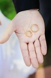 Two gold wedding rings Royalty Free Stock Images