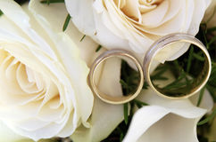 Two gold wedding rings on white rose  flower. Close up photo of two gold wedding rings on white rose wedding bouquet Royalty Free Stock Images