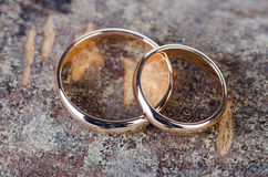 The two gold wedding rings on wooden background Stock Images