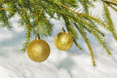 Two golden Christmas balls on green spruce branch Royalty Free Stock Images