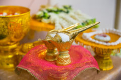 Two Golden conch shell for Thai style wedding.  Royalty Free Stock Images