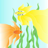 Two golden fishes underwater illustration Royalty Free Stock Image