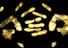 Two golden palms. Intersect with fingers on a black background Royalty Free Stock Images