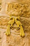 Two golden peacock. Judean Desert, Israel Stock Photography