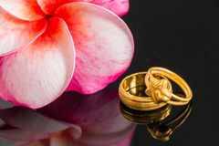 Two golden ring with pink orchid Stock Images