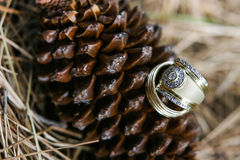 Two golden rings Stock Photography